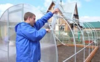 Как покрыть двухскатную крышу теплицы поликарбонатом