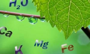 Нормы питьевой воды по СанПиНу